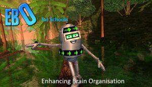 EBO for Schools Enhancing Brain Organisation